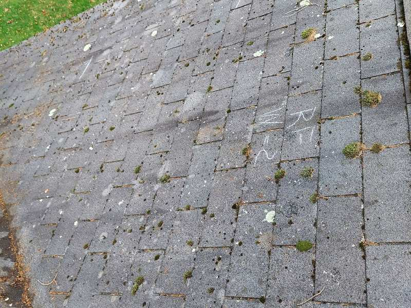 Black stains on your roof are signs of a bad roofing job
